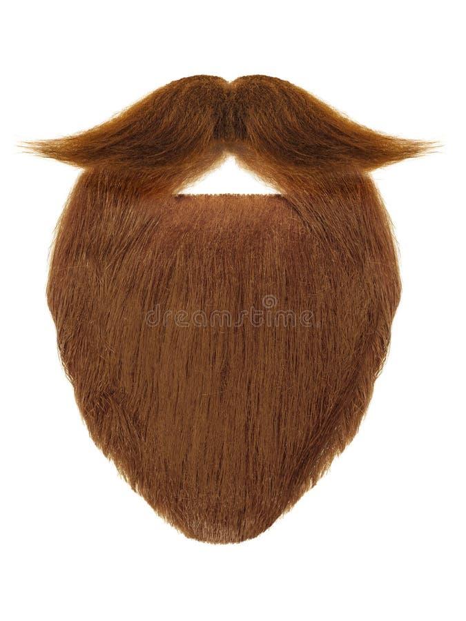 Красная борода при курчавый усик изолированный на белизне стоковое фото rf