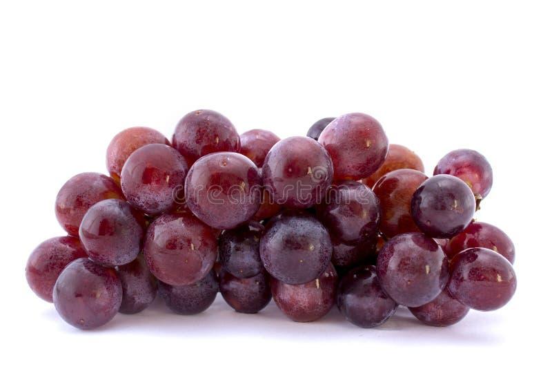 Красная виноградина изолированная на белизне стоковая фотография rf