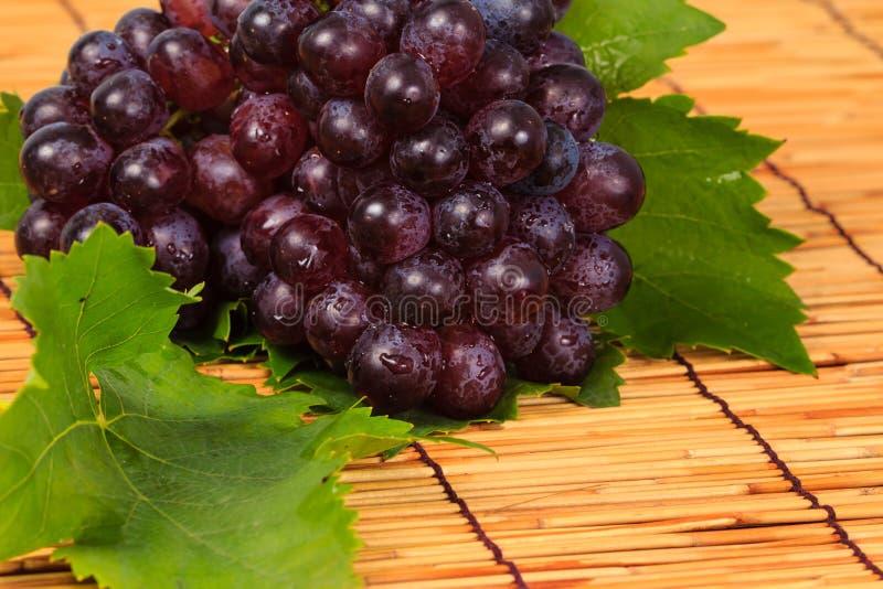 Красная виноградина и листья стоковое изображение rf
