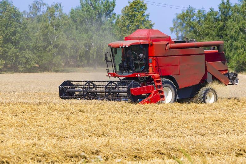 Красная жатка работая в поле земледелия стоковая фотография rf