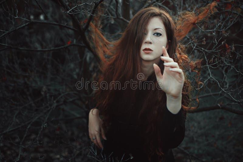 Красная женщина волос в запустелом лесе стоковое изображение