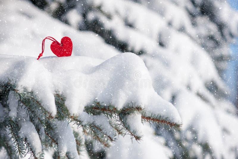 Красная игрушка сердца в снежностях на ели стоковые изображения