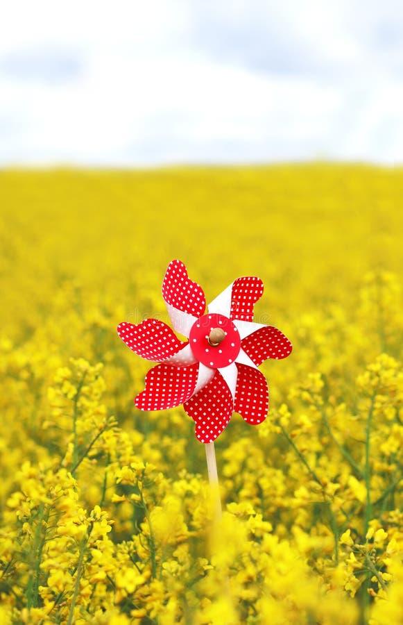Красная игрушка pinwheel в зацветая поле рапса, небе в задней части стоковая фотография rf