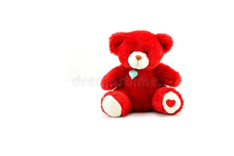 Красная изолированная кукла медведя стоковое фото
