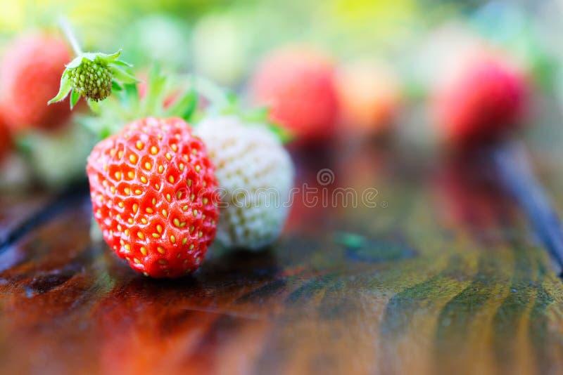 Красная и белая клубника на деревянном столе стоковые изображения
