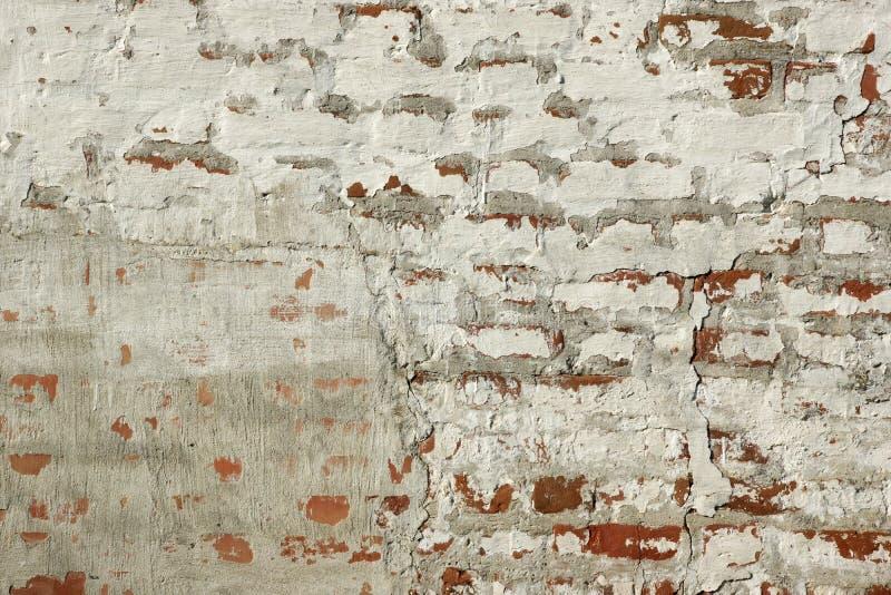 Красная кирпичная стена с поврежденным и треснутым белым гипсолитом стоковые изображения
