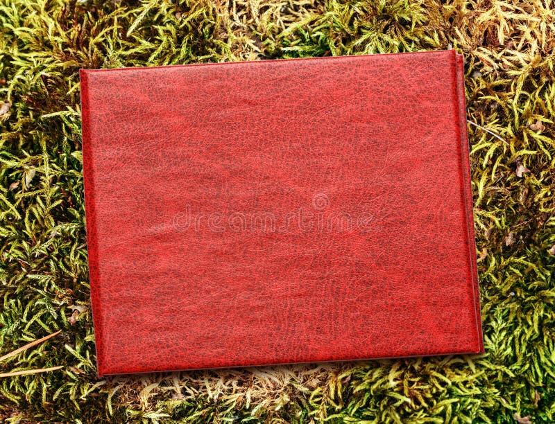Красная крышка пустого документа стоковое изображение rf