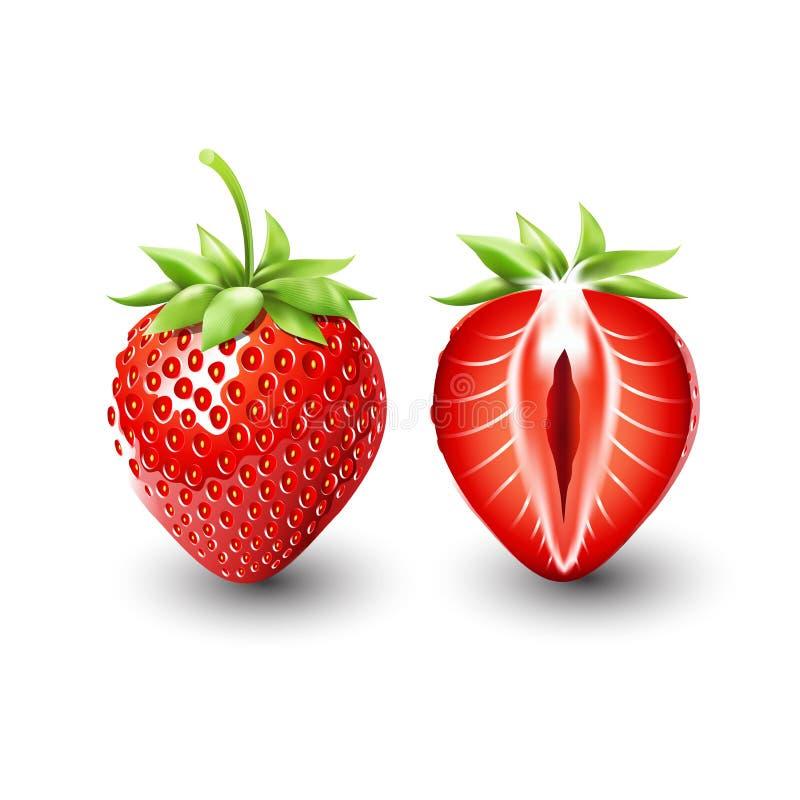 Красная клубника ягоды и половина клубники, плодоовощ, прозрачного, вектора бесплатная иллюстрация