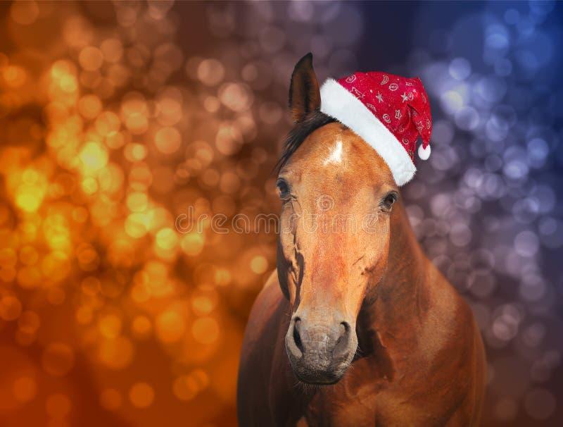 Красная лошадь в шляпе Санты на предпосылке рождества с bokeh стоковые изображения rf