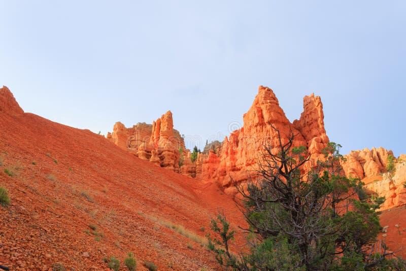Красная панорама каньона, Юта, США стоковая фотография rf