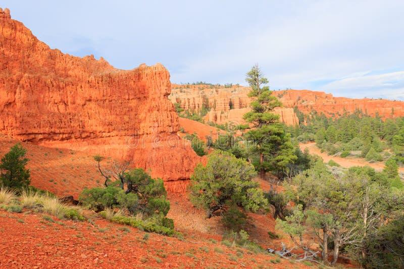 Красная панорама каньона, Юта, США стоковые фотографии rf