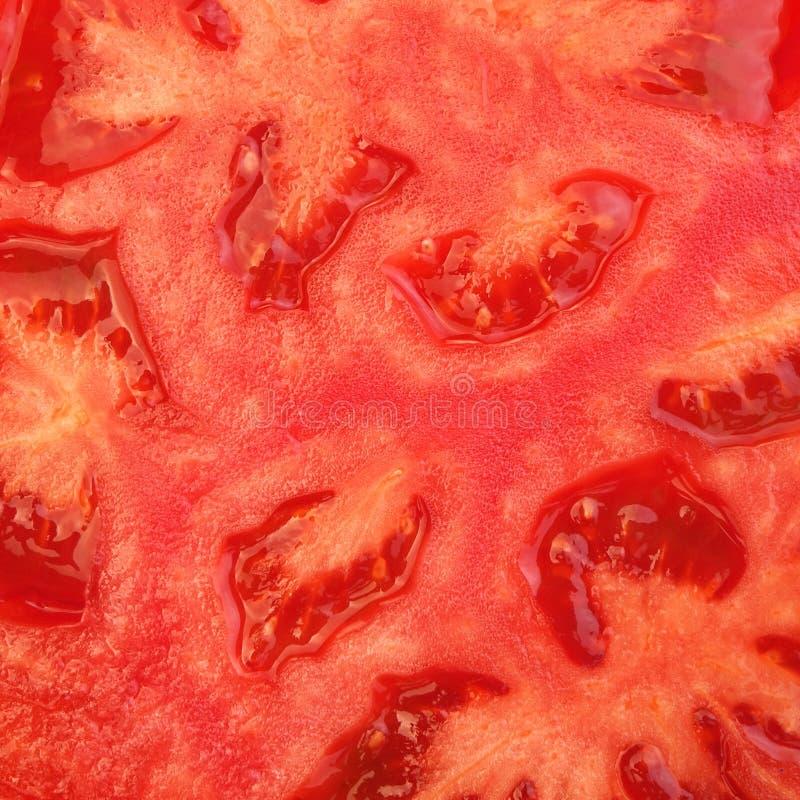 Красная предпосылка рамки томата Крупный план зрелого креста Sectio томата стоковые фотографии rf