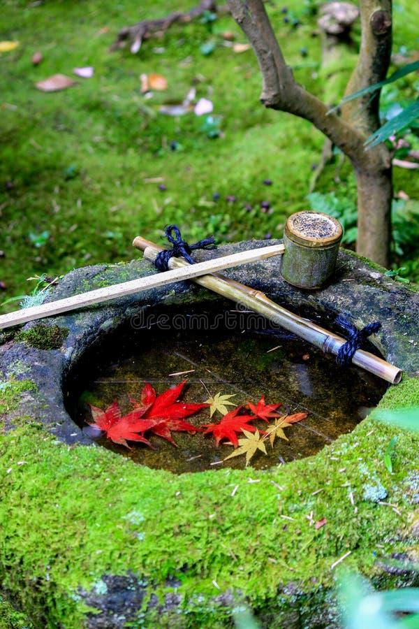 Красная раковина листьев внутри каменного ушата стоковые фото