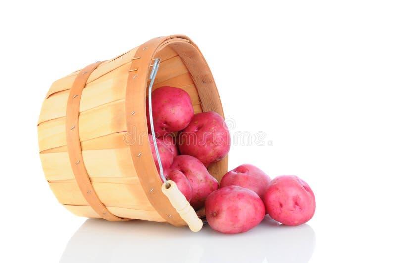 Красная расслоина корзины картошек на белизне стоковые фотографии rf