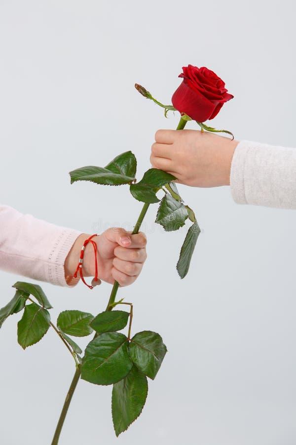 Картинка роза в руках с каким заболеванием связано