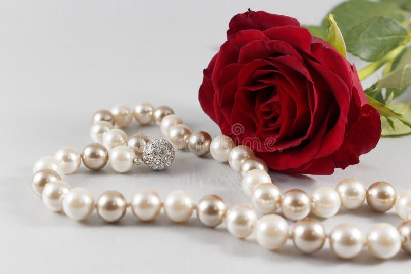 Красная роза и жемчуга на белой предпосылке стоковое фото rf