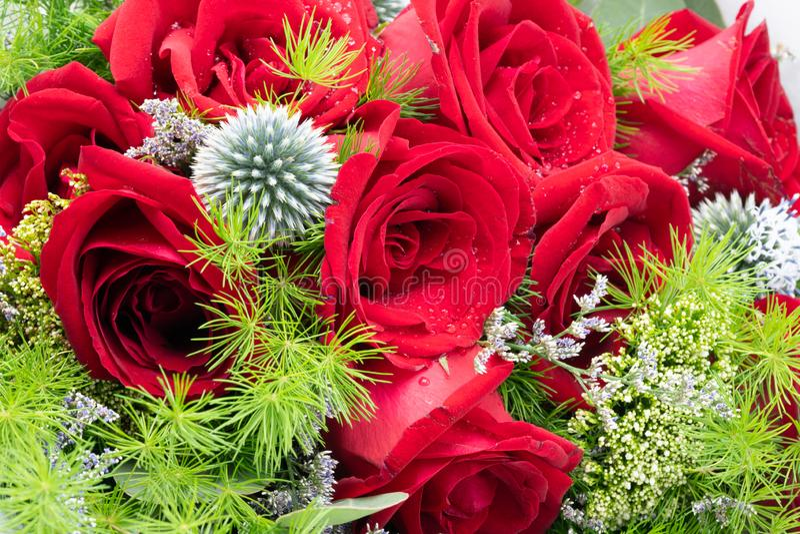 Красная роза и пинк красиво аранжировали в вазе цветка Имейте ro стоковое изображение rf