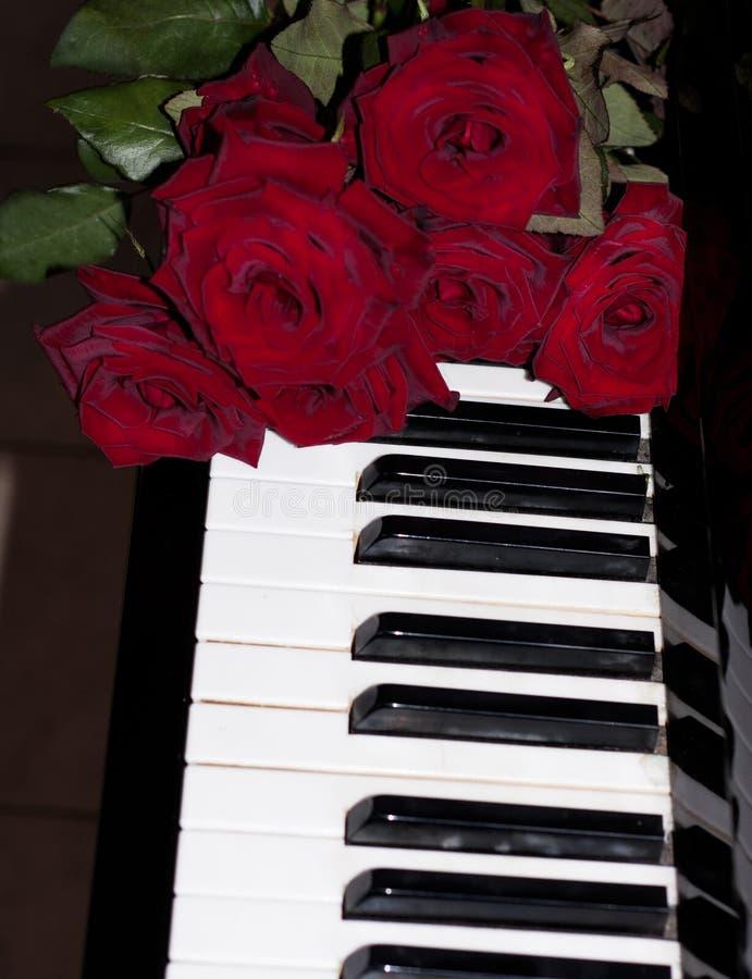 Красная роза на клавиатуре рояля стоковые фотографии rf