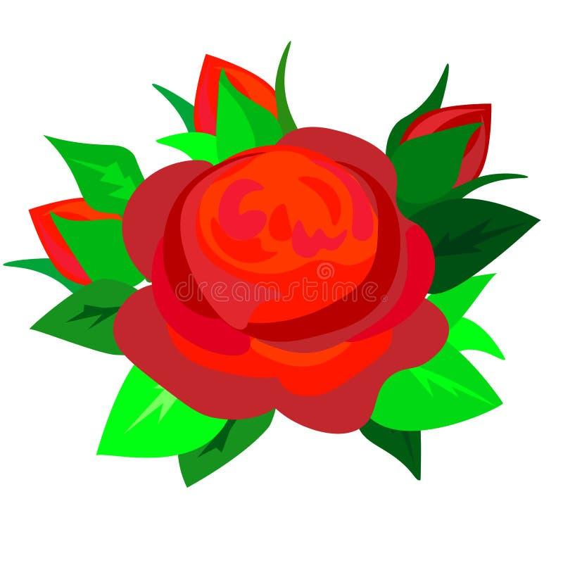 Красная роза сети Изолированный цветок на белой предпосылке иллюстрация вектора