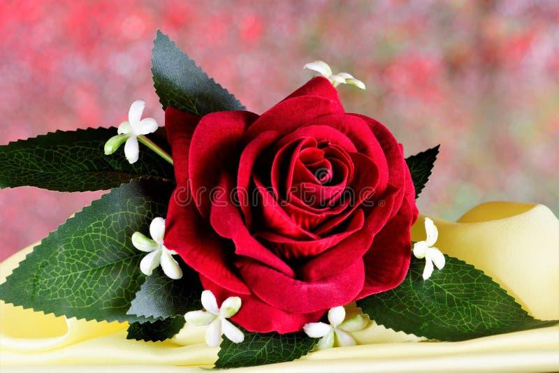 Красная роза Boutonniere - костюм вспомогательных людей украшения Традиция украшать одежды с цветками от старых времен, как a стоковые изображения rf