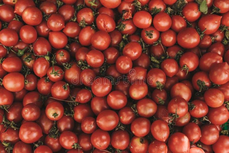 Красная свежая предпосылка томатов Естественные местные продукты на рынке фермы жать Сезонные продукты Питание стоковые изображения