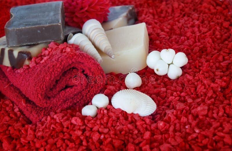 красная спа установки стоковое изображение