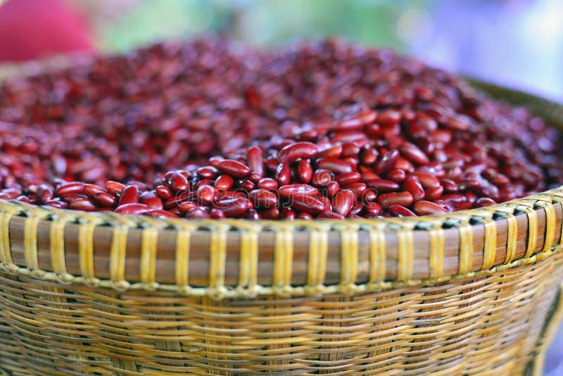 Красная фасоль стоковая фотография rf