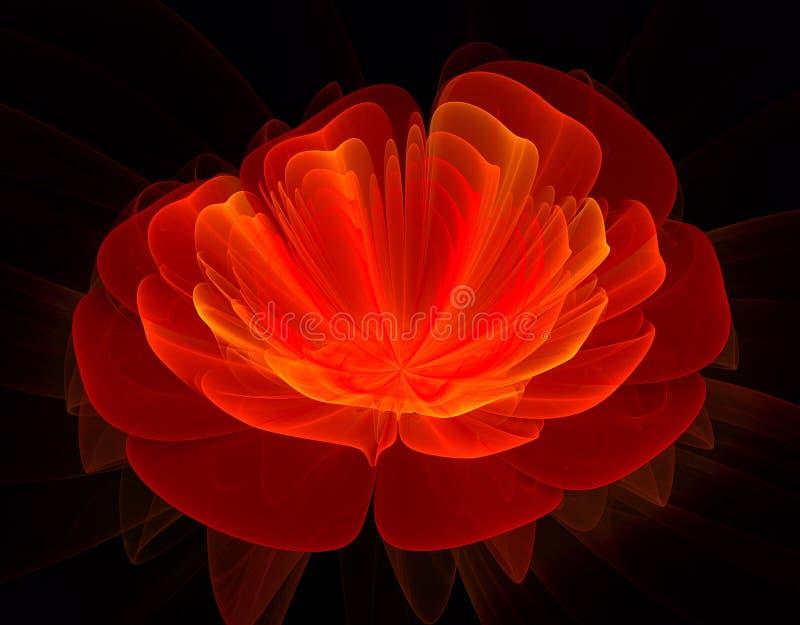 Красная фракталь цветка стоковые изображения