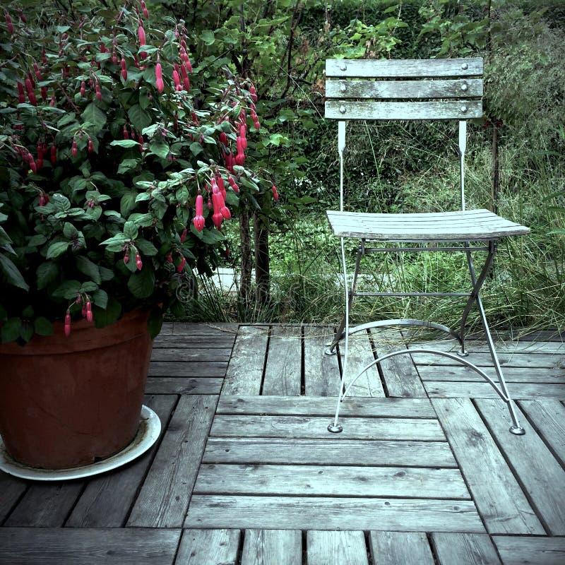 Красная фуксия и старый деревянный стул стоковая фотография