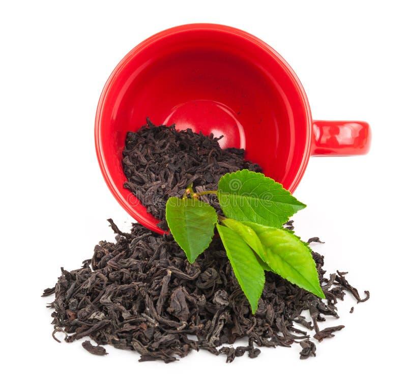 Download Красная чашка с чаем стоковое фото. изображение насчитывающей бело - 81808814