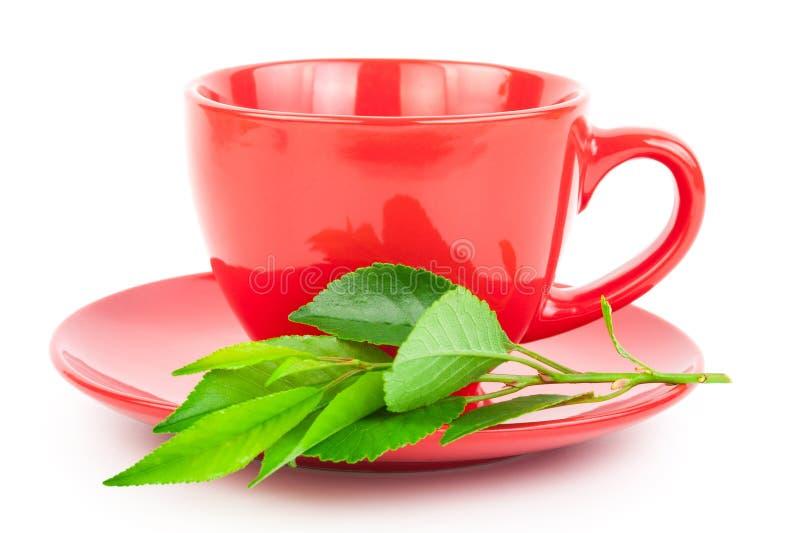 Download Красная чашка чаю с листьями Стоковое Изображение - изображение насчитывающей черный, питье: 81811069