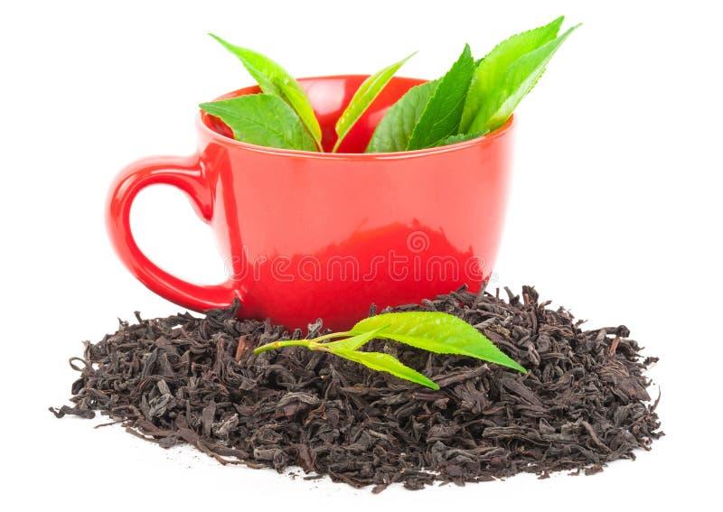 Download Красная чашка чаю с листьями Стоковое Фото - изображение насчитывающей здоровье, бело: 81812406