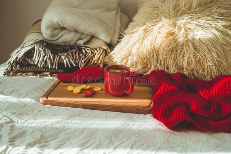 Красная чашка чаю с кумкватом и 2 печеньями сердец на белой кровати уютный дом сердце подарка дня принципиальной схемы голубой ко стоковое изображение rf