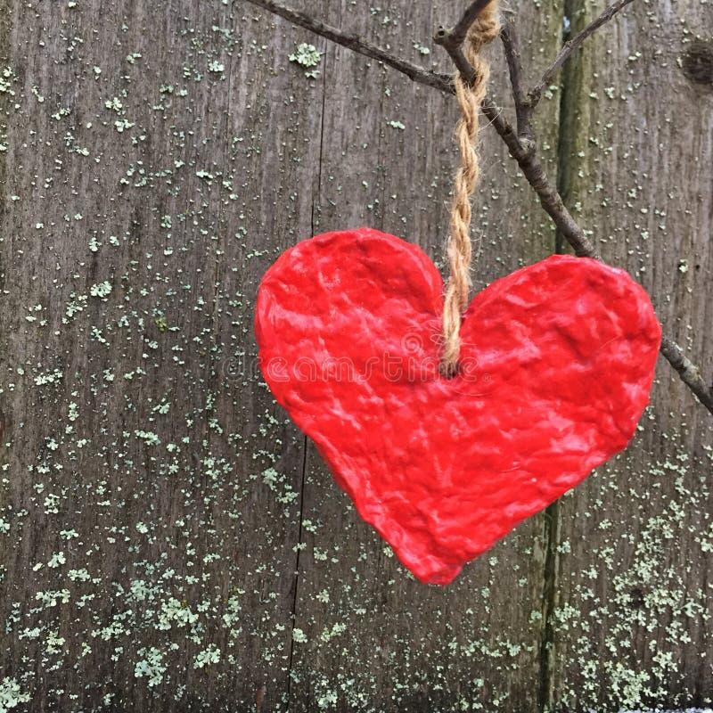Красное бумажное сердце вися на ветви дерева стоковая фотография