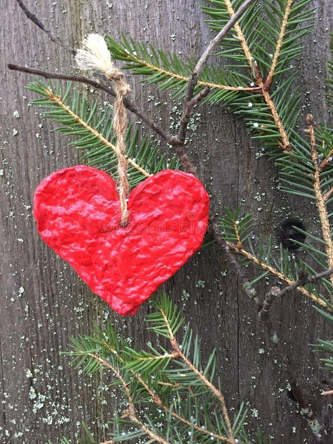 Красное бумажное сердце вися на елевой ветви стоковая фотография rf