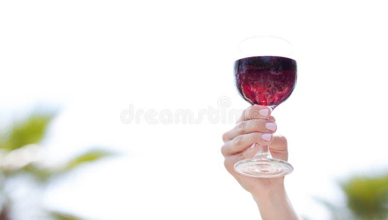 Красное вино поворачивая на шарнирах в стеклянном, тропическом море на заднем плане Красивая женская рука держа стекло французско стоковое изображение rf
