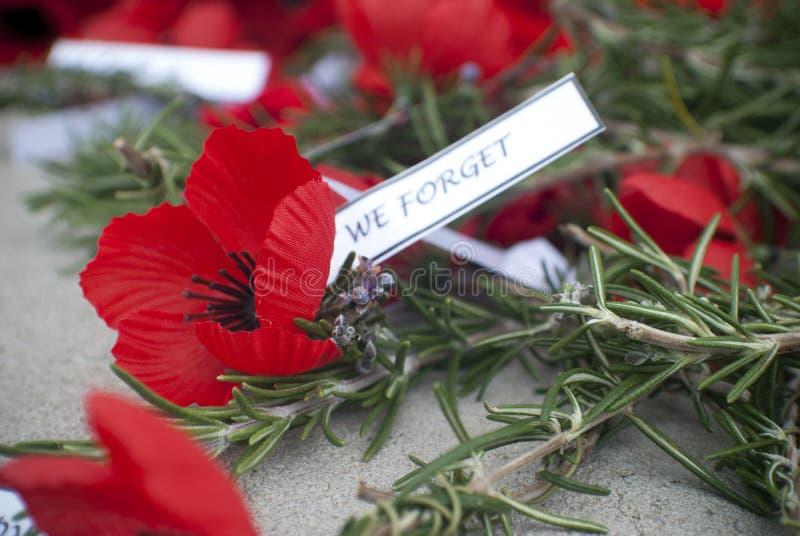 Красное день памяти погибших в первую и вторую мировые войны дня anzac мака стоковые фото
