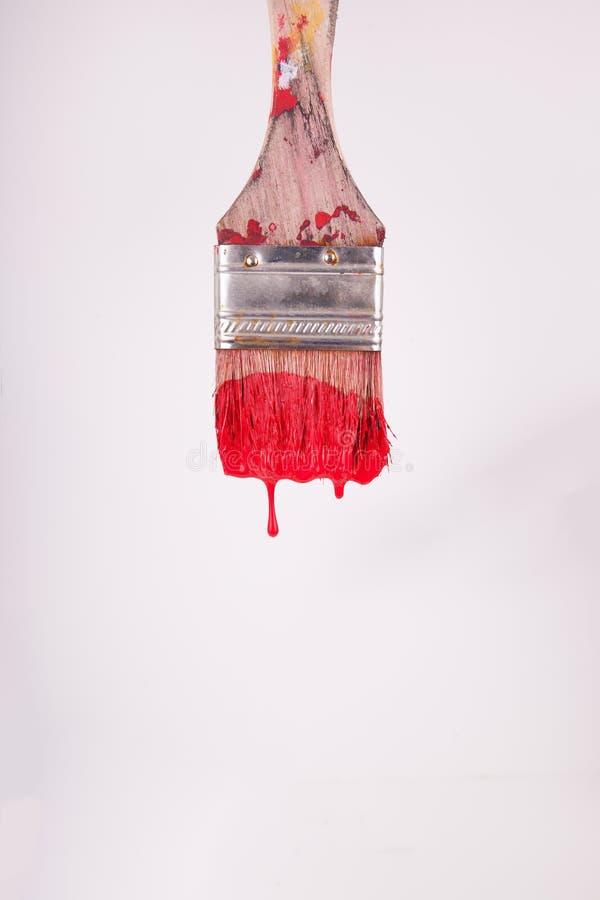 Красное капание краски от художников чистит белый фон щеткой стоковая фотография