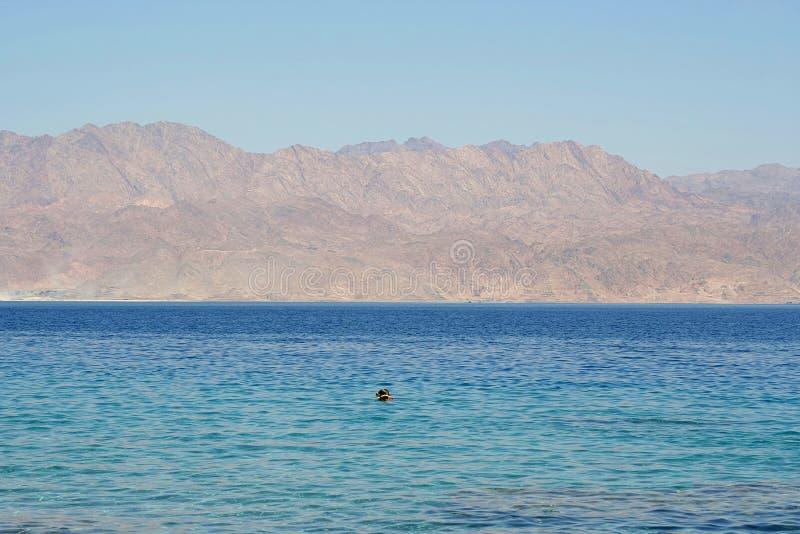 Красное Море стоковая фотография