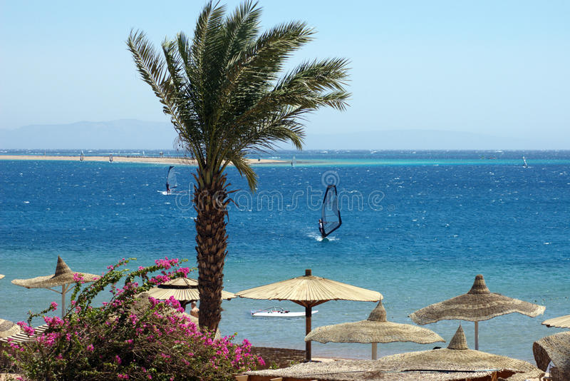 Красное Море sinai полуострова Египета dahab стоковое изображение rf