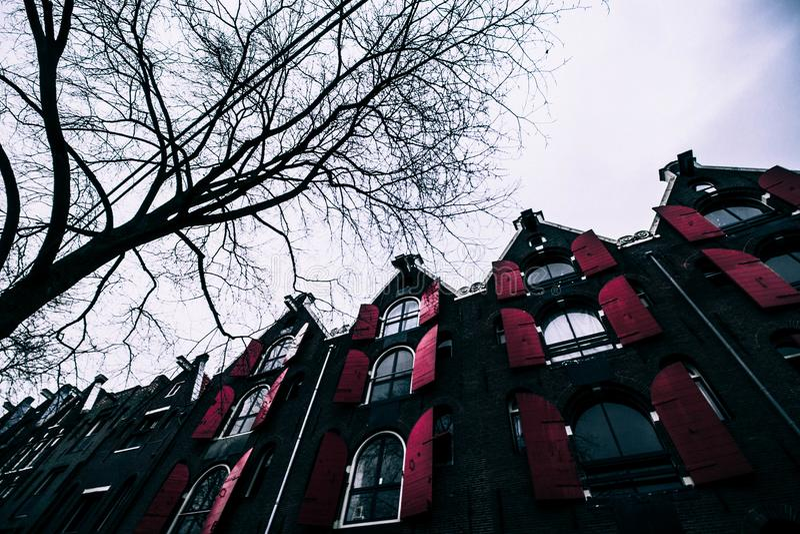 Красное окно в зиме Амстердама стоковая фотография rf