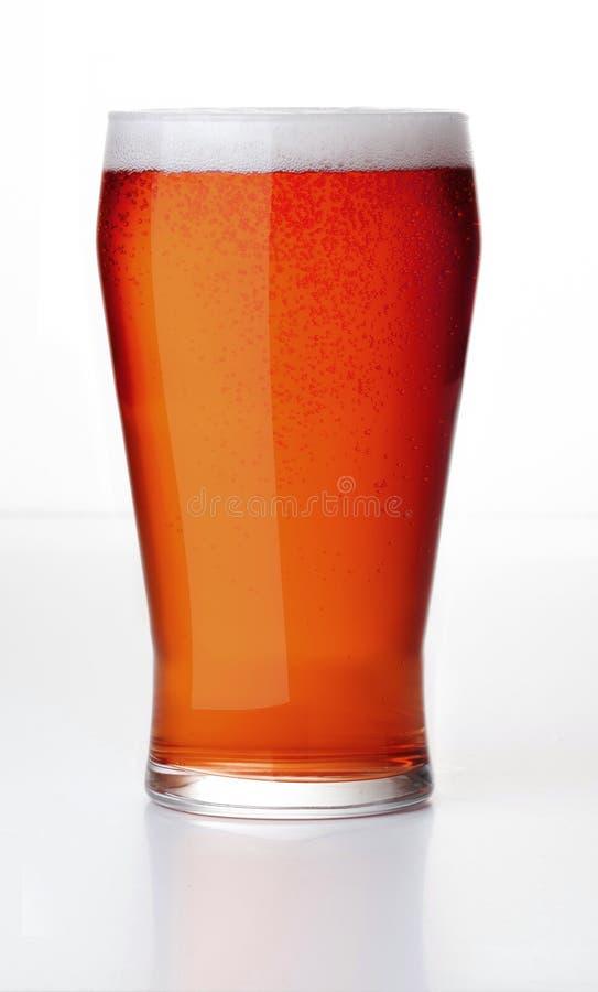 Красное пиво эля стоковые изображения
