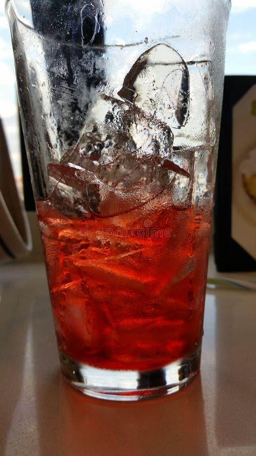 Красное питье стоковая фотография rf