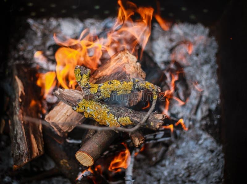 Красное пламя от отрезка дерева, темного - серые угли внутри медника металла Горение швырка в меднике на ярком желтом пламени стоковые фотографии rf