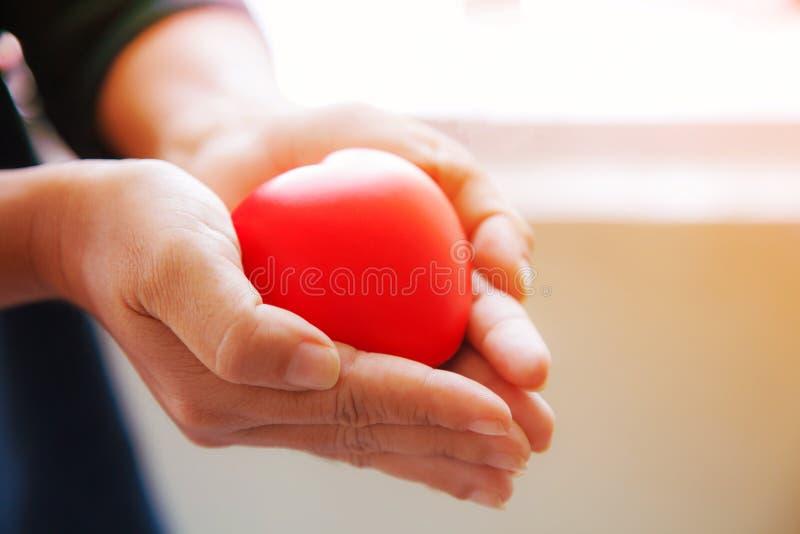 Красное сердце в обеих руках женщины в черной предпосылке костюма, представляет руки помощи в трудном времени, заботя, любов, соч стоковая фотография rf
