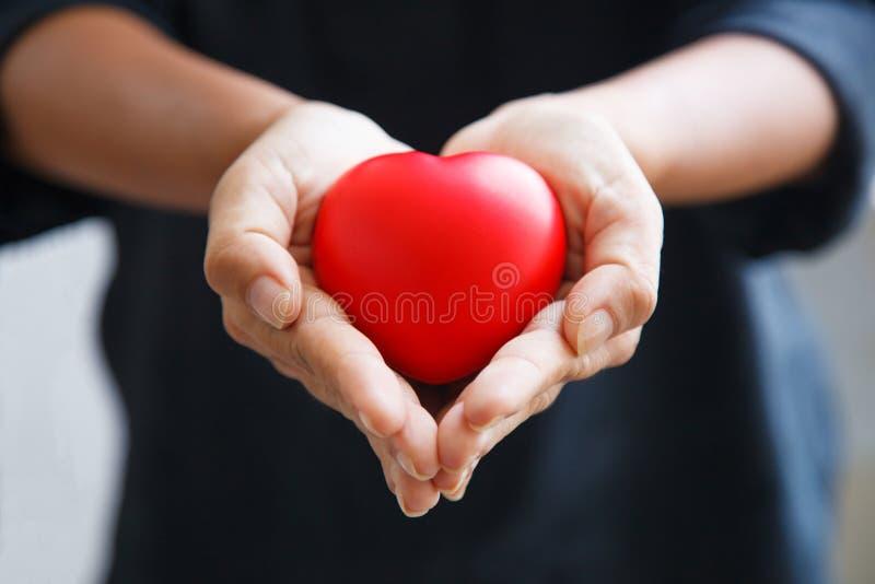Красное сердце, который держат обе руки женщины, представляет руки помощи, заботя, любовь, сочувствие, соболезнование, отношение  стоковые фотографии rf