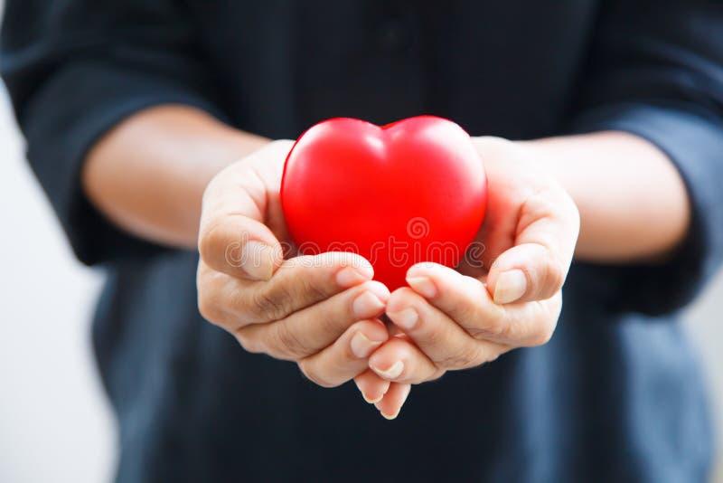 Красное сердце, который держат обе руки женщины, представляет руки помощи стоковые изображения rf
