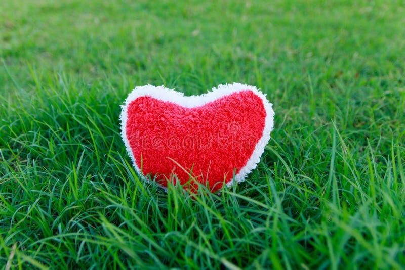 Красное сердце на траве стоковая фотография rf