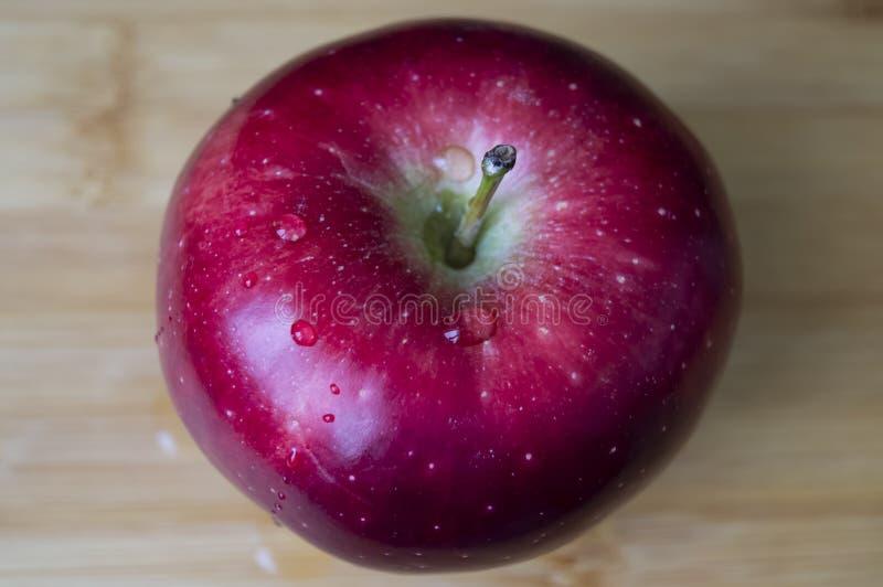 Красное сочное естественное Яблоко с падениями воды стоковое фото