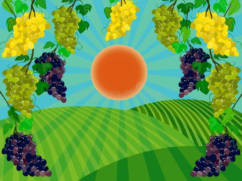 Красное солнце над вспаханными полями бесплатная иллюстрация